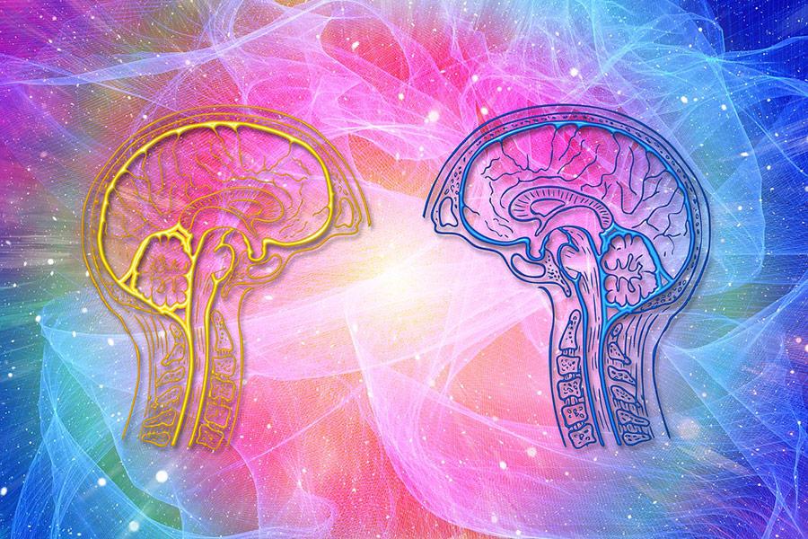 Άνοια δεν είναι μόνο η Αλτσχάιμερ